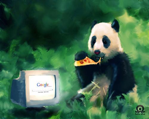 google panda What is Google Panda?